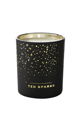 Ted Sparks Cinnamon & Spice Demi Candle